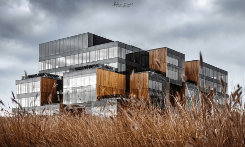 Studio Fotografii DAMARTI